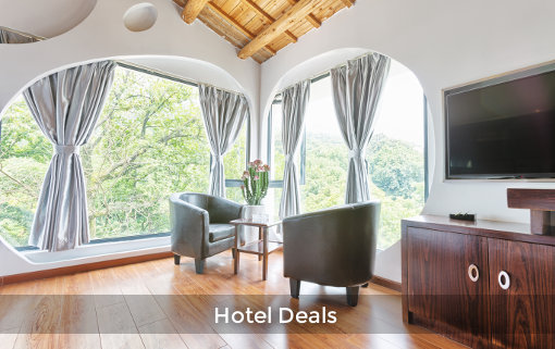 Find the best hotel deals