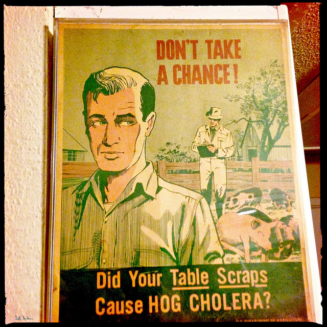 """Hog Cholera"" by Seth Anderson"