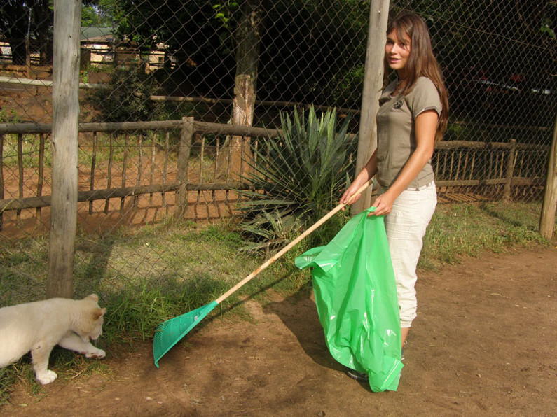 Lion enclosure cleaner