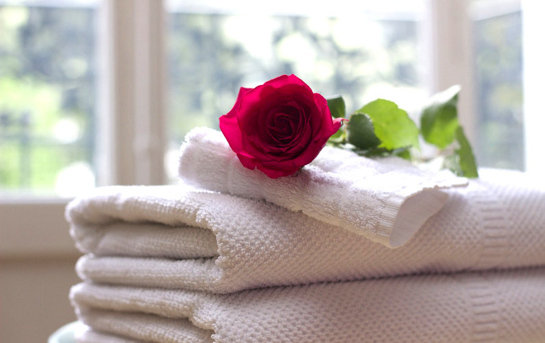 Hotel towels and flower